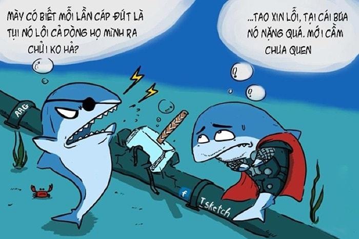 cá mập cắn đứt cáp quang